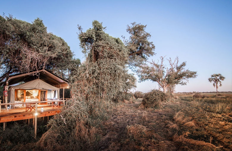Afrika Botswana Safari - Fly In ins Rra Dinare Camp